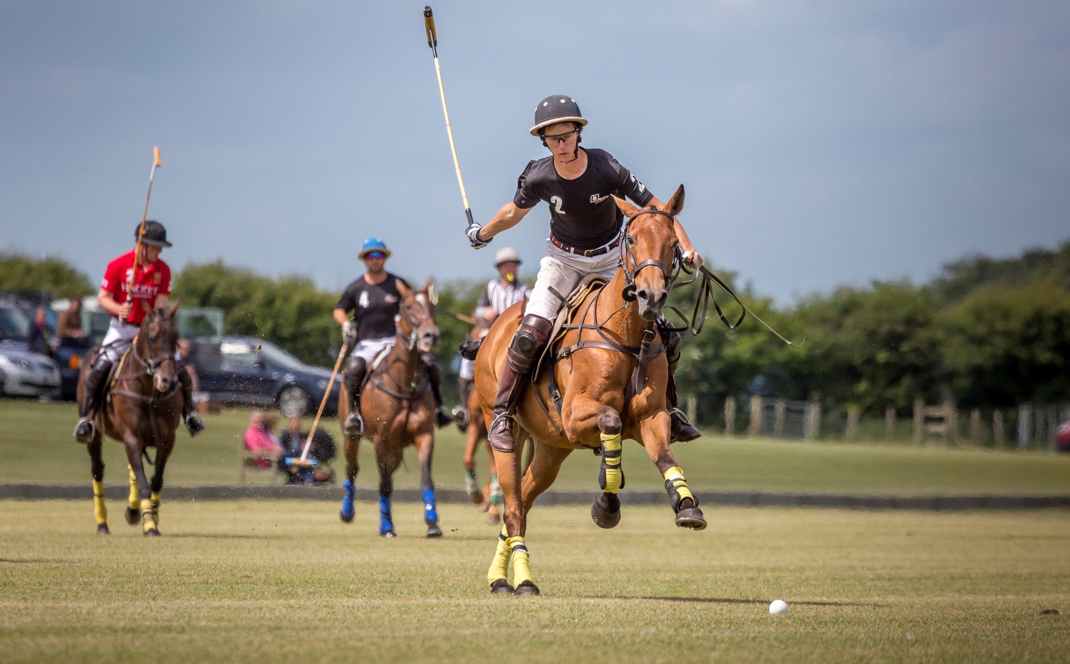 Improve your Polo at Druids