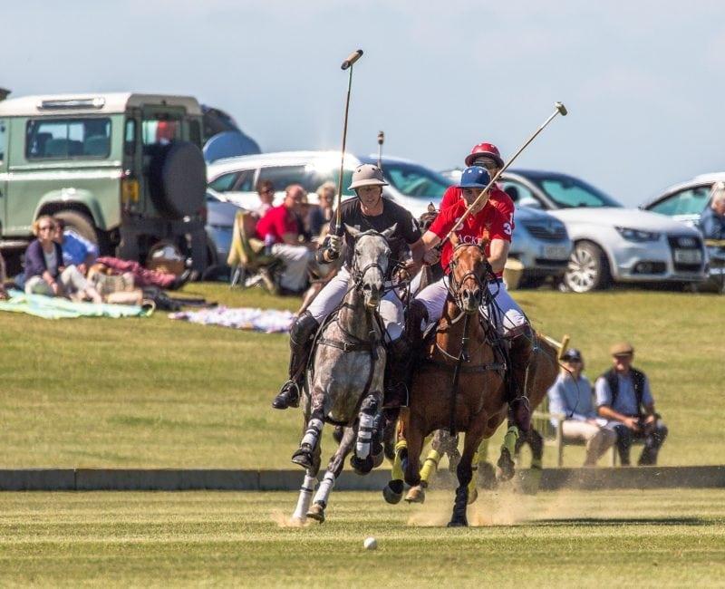 Play polo at Druids Lodge