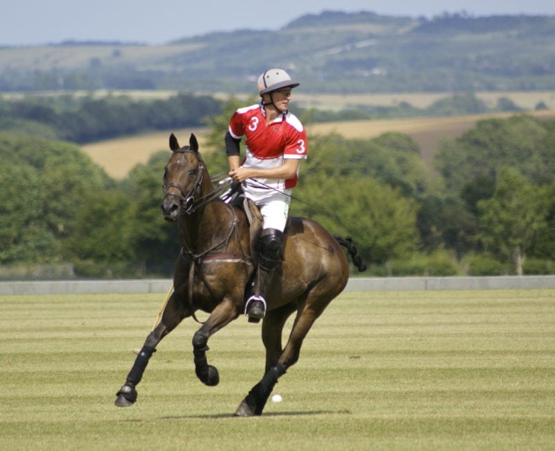 Improve your Polo at Druids Lodge