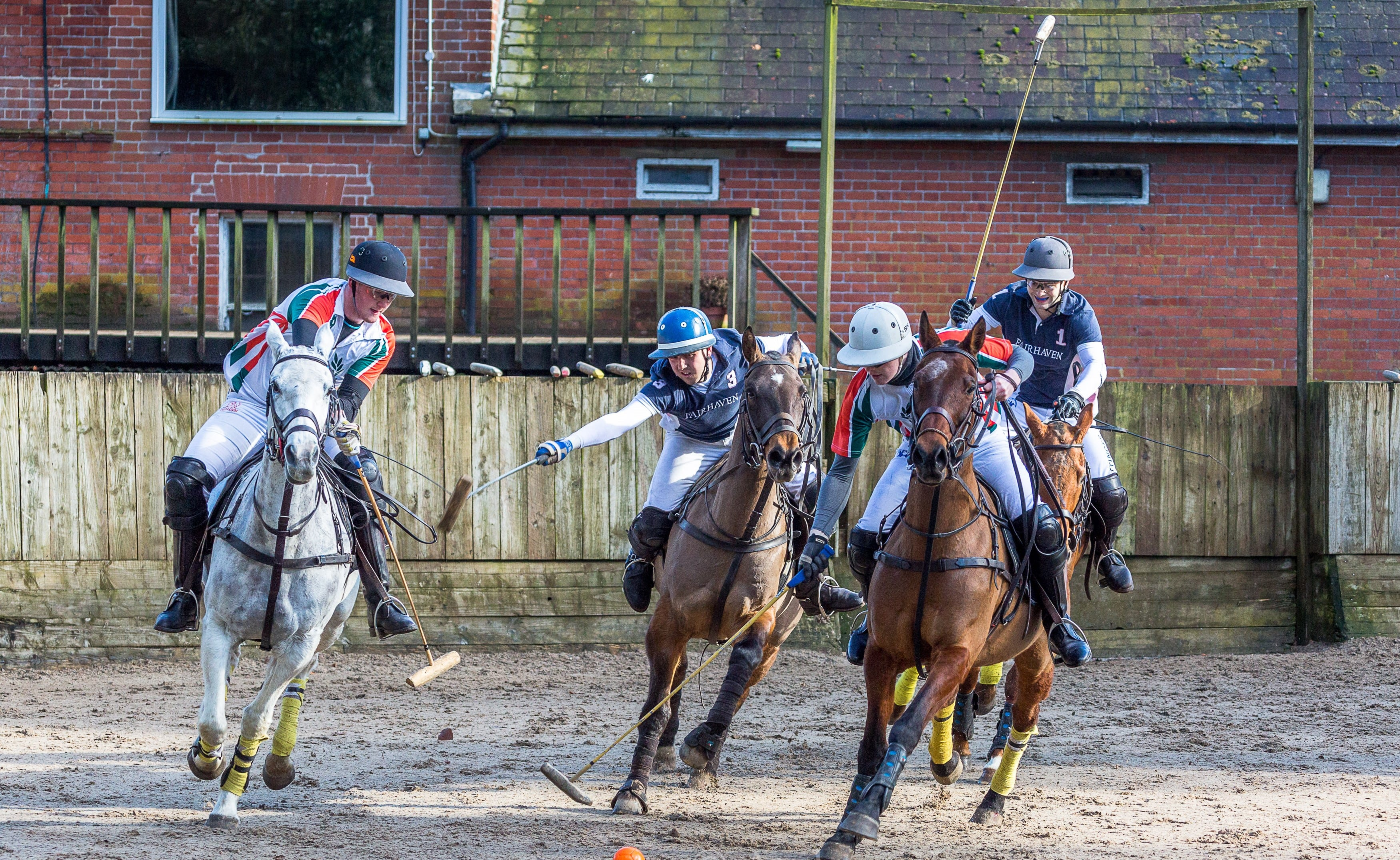 Arena Polo at Druids Lodge